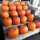 Pumpkins On Display by rosaliemcm