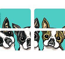 Boston Terriers in the Window by offleashart