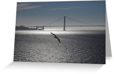 Tranquil Golden Gate by David Denny