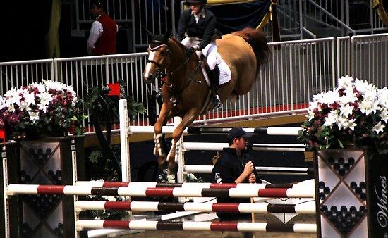 Horse in flight, raker oblivious by photobylorne