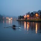 Early Morning Sculling by Joanne Piechota
