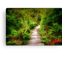 Garden Steps Canvas Print
