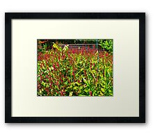 Get the point? Framed Print