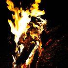 """Burning Croc"" by Andreas Koerner"