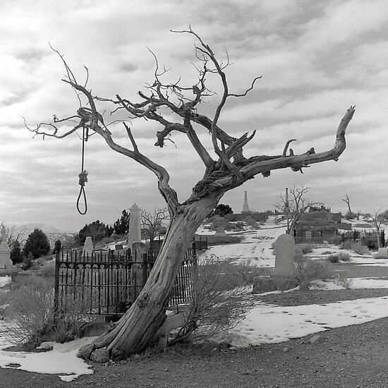 Hanging Tree -  Virginia City, Nevada by Harry Snowden