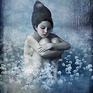 Shadow Field by ChristianSchloe
