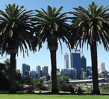 Perth City From Kings Park. by Eve Parry