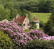 Scotney Castle in May by Irina Chuckowree