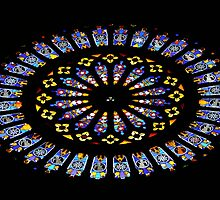 Rose Window by ccr358