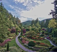 Butchart Gardens by insomnious247