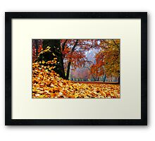 magical autumn Framed Print