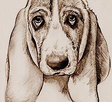 puppy dog eyes by Lauren Hughes