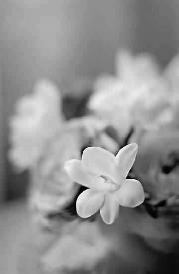 I Do Love Thee... by Carol Knudsen