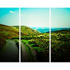 Long Mynd (Lomography) by lomonomad