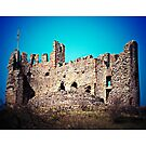 Dudley Castle (Lomography) by lomonomad