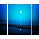 Moonlit La Tranche Sur Mer (Lomography) by Joel Stone
