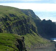 Rathlin Island - Coastline by sarahjadair