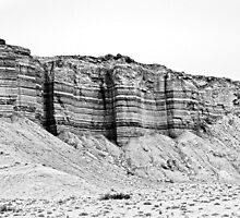 Grand Staircase Escalante Black and White by Dawn Crouse