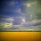 Bye bye summer of 2012...... by Dirk van Laar
