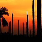 200808011921 Sunsets by Steven  Siow