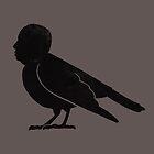 Ornithology by ivanrodero