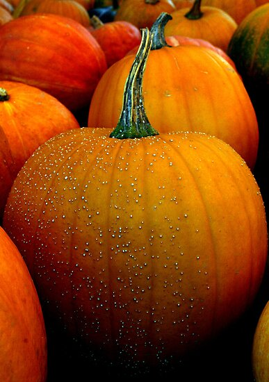 Jack 'O Lanterns to be by patjila