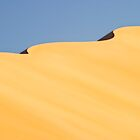 Desert 09 by Yannick Verkindere