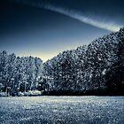 Twilight by Alex Vasilakos