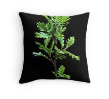 It's a new life, And I'm feeling good Throw Pillow