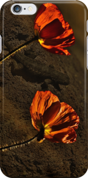 Красные маки  - Red Poppy by LudaNayvelt