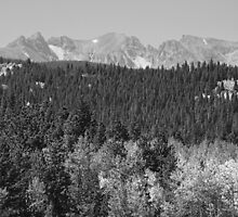 Colorado Rocky Mountain Continental Divide View BW by Bo Insogna