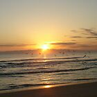 Sunsets by Penny Rinker