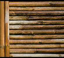 Bamboo Fence by Don Schwartz