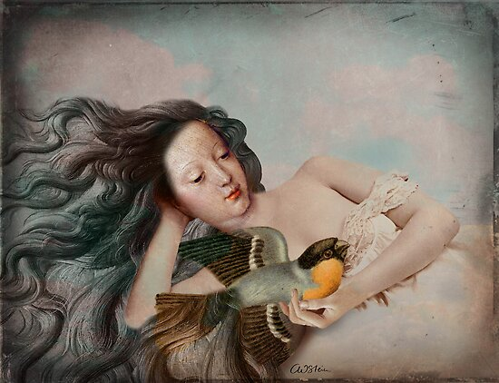 Der Singvogel by Catrin Welz-Stein