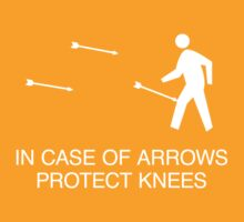 In case of arrows by Douglas Smith