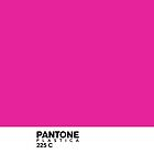 Pantone Plastica 225 C iPhone case by Plastica Tees