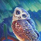Aurora Owl by katemccredie