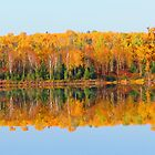 Fall , Island lake, Ontario by Alex Call