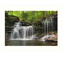 Unabstructed Spring View of R. B. Ricketts Falls (...from under the fallen tree) Art Print
