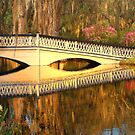 Bridge At Magnolia Plantation by Kathy Baccari