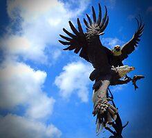 Screaming Eagles by L.D. Bonner