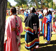Paiute Pow Wow by marilyn diaz