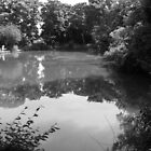 priory park in grey by Perggals© - Stacey Turner