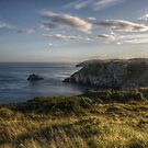 British Coastline, Berry Head by Robbie Labanowski