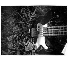 Music Nature: Bass Guitar 2 Poster