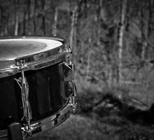 Music Nature: Snare 1 by RedKitchen