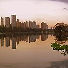 Londrina Sunset by virtualkiwi