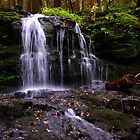 Waterfalls  by Debra Fedchin