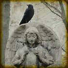 On Angel Wings by gothicolors