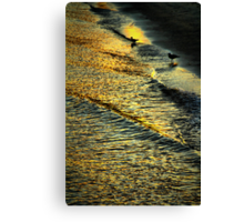 The Midas Touch Canvas Print